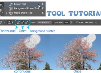 Background-Eraser-Tool-tooltutorial