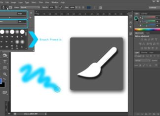 Brush-Tool-tooltutorial
